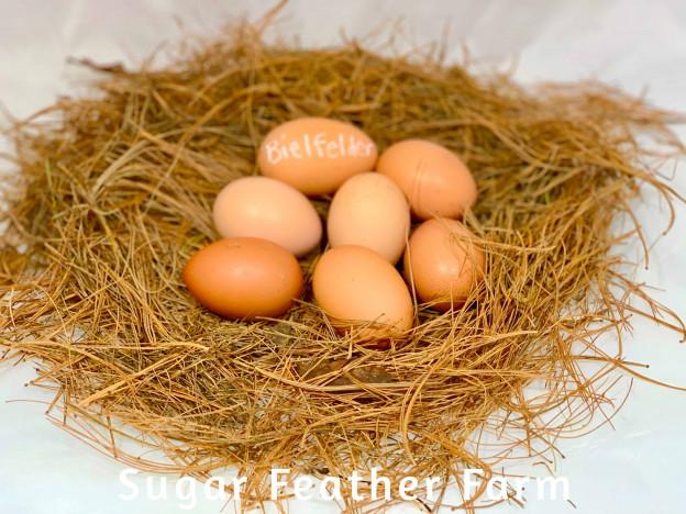 Bielfelder Eggs